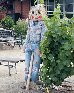 jsw_scarecrow.jpg