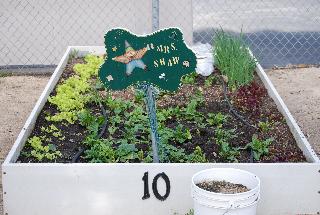 planter_2.bmp